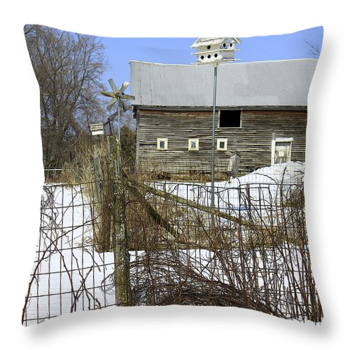 Country Throw Pillow featuring the photograph Premium Bird House View by Deborah Benoit