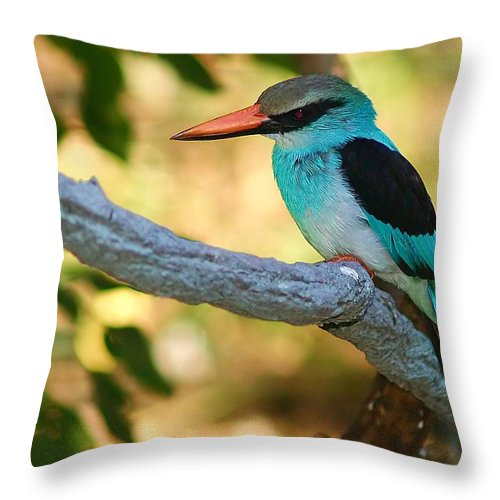 Kingfisher Throw Pillow featuring the photograph Pretty Bird by Gaby Swanson