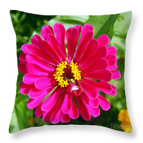 Clay Throw Pillow featuring the photograph Pretty In Pink by Clayton Bruster