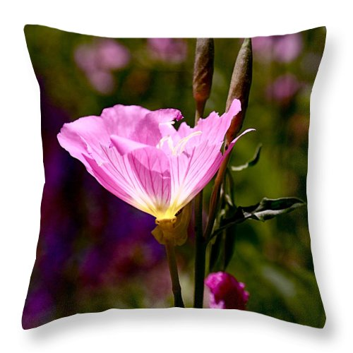 Pink Throw Pillow featuring the photograph Pretty In Pink by Rona Black