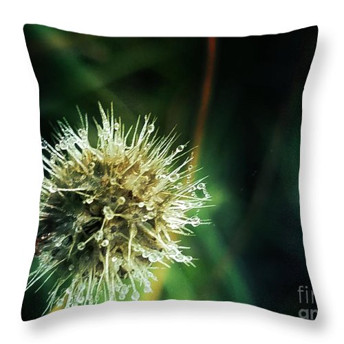 Prickly Throw Pillow featuring the photograph Prickly by Maria Urso
