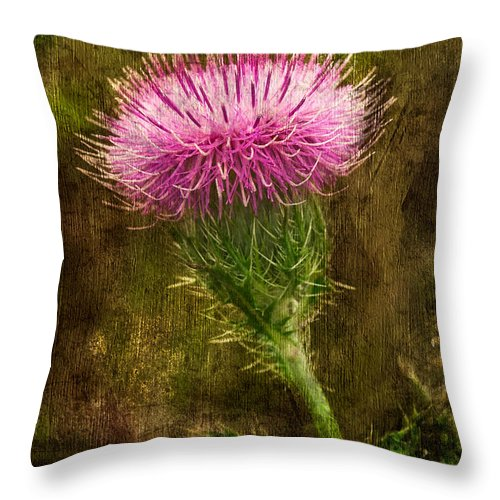 Thistle Throw Pillow featuring the photograph Prickly Thistle by Rich Leighton