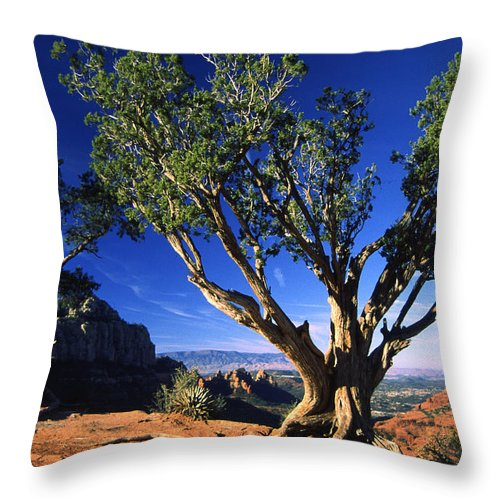 Arizona Throw Pillow featuring the photograph Primary Colors by Randy Oberg