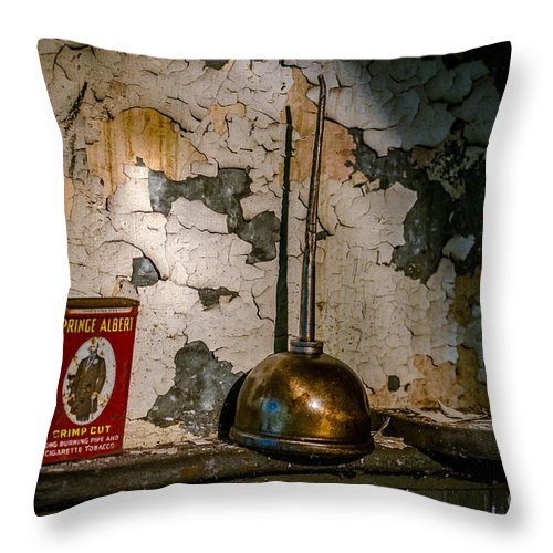 Background Throw Pillow featuring the photograph Prince Albert And His Can by Arne Hansen
