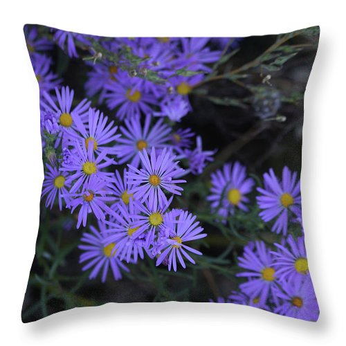 Purple Throw Pillow featuring the photograph Profusion Of Purple by Doris Potter