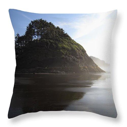 oregon Coast Throw Pillow featuring the photograph Proposal Rogue Wave Rock - Oregon Coast by Daniel Hagerman
