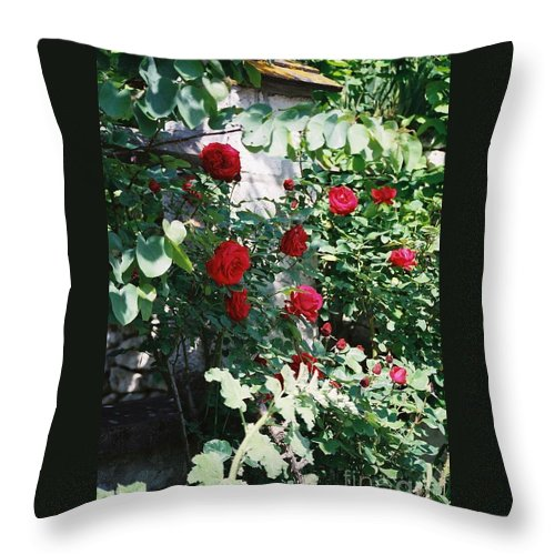 Floral Throw Pillow featuring the photograph Provence Red Roses by Nadine Rippelmeyer
