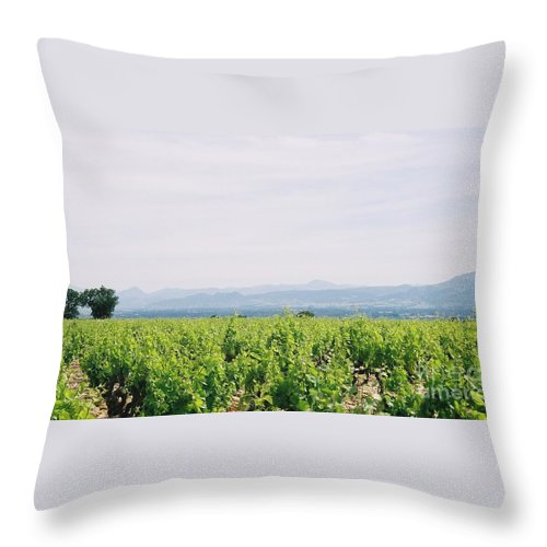 France Throw Pillow featuring the photograph Provence Spring Vineyard by Nadine Rippelmeyer