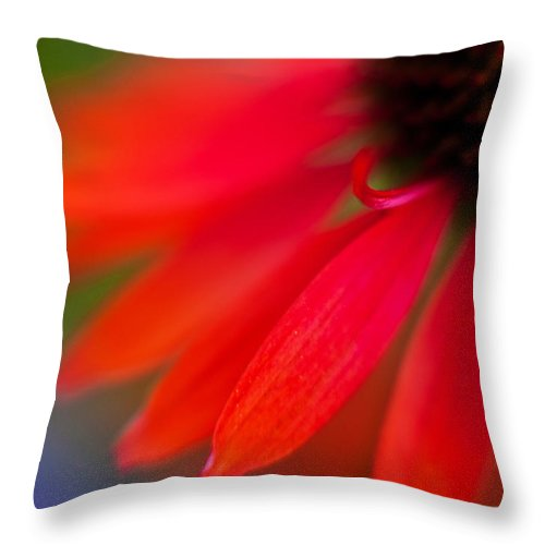 Echinacea Throw Pillow featuring the photograph Psychedlia by Mike Reid