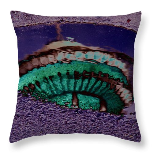 Seattle Throw Pillow featuring the digital art Puddle Needle by Tim Allen