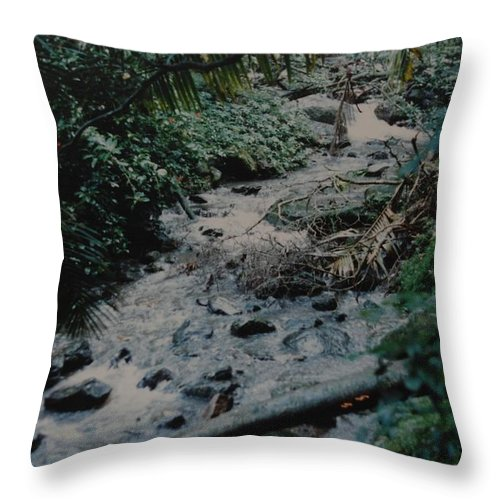 Trees Throw Pillow featuring the photograph Puerto Rico Water by Rob Hans