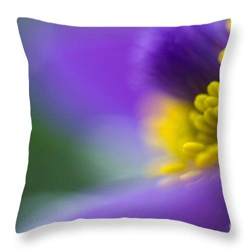 Flower Throw Pillow featuring the photograph Pulsatilla by Silke Magino