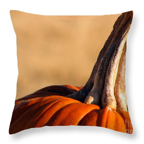 Pumpkins Throw Pillow featuring the photograph Pumpkin by Amanda Barcon