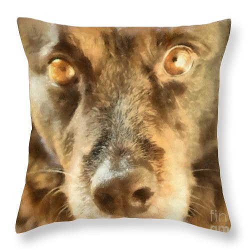 Dog Throw Pillow featuring the photograph Puppy Eyes by Paulette B Wright