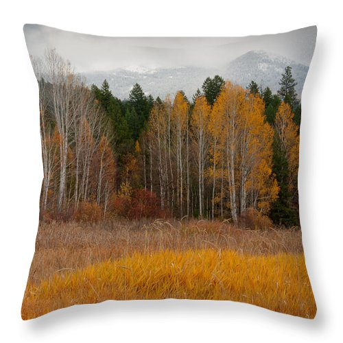 Kaniksu National Forest Throw Pillow featuring the photograph Purcell Gold by Idaho Scenic Images Linda Lantzy