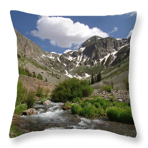 Trees Throw Pillow featuring the photograph Pure Mountain Beauty by Carol Milisen
