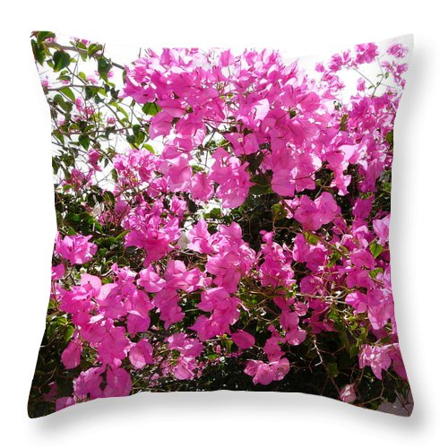 Bougainvillea Throw Pillow featuring the photograph Purple Abundance by Valerie Ornstein