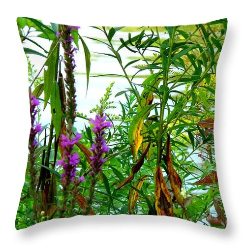 Purple Throw Pillow featuring the photograph Purple And Yellow by Ian MacDonald