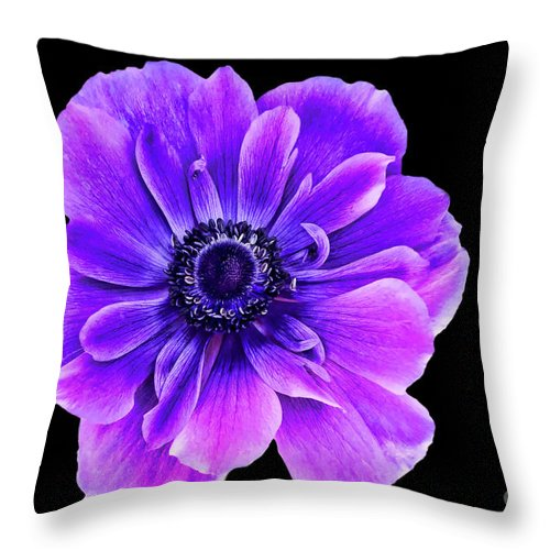 Purple Flower Throw Pillow featuring the photograph Purple Anemone Flower by Mariola Bitner