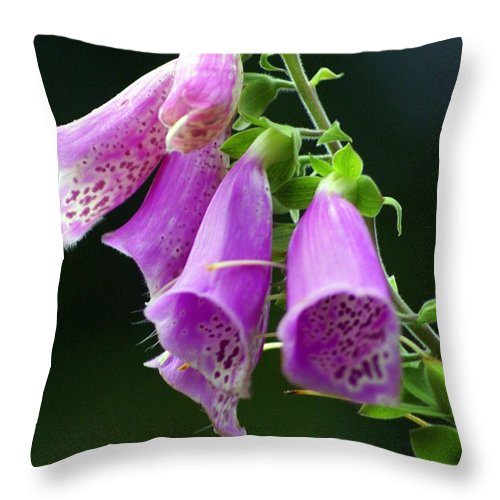 Flowers Throw Pillow featuring the photograph Purple Bells Horizontal by Marty Koch