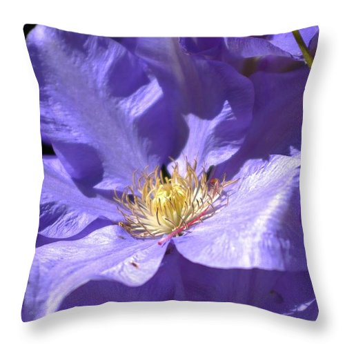 Flower Throw Pillow featuring the photograph Purple Clematis by Lori Seaman