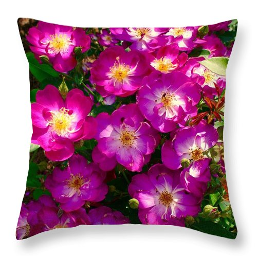 Purple Roses Throw Pillow featuring the photograph Purple Cluster 2 by Bennett Thompson
