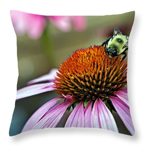Macro Throw Pillow featuring the photograph Purple Cone Flower And Bee by Al Mueller
