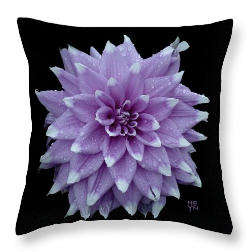 Cutout Throw Pillow featuring the photograph Purple Dahlia Cutout by Shirley Heyn
