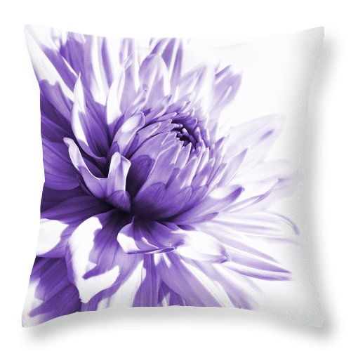 Dahlia Throw Pillow featuring the photograph Purple Dahlia Floral by Jennie Marie Schell