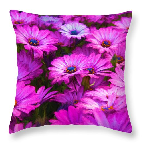Purple Throw Pillow featuring the photograph Purple Daisies by Vicki France