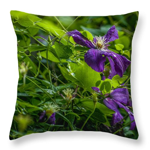Flower Throw Pillow featuring the photograph Purple Flower by Adriana Marteva