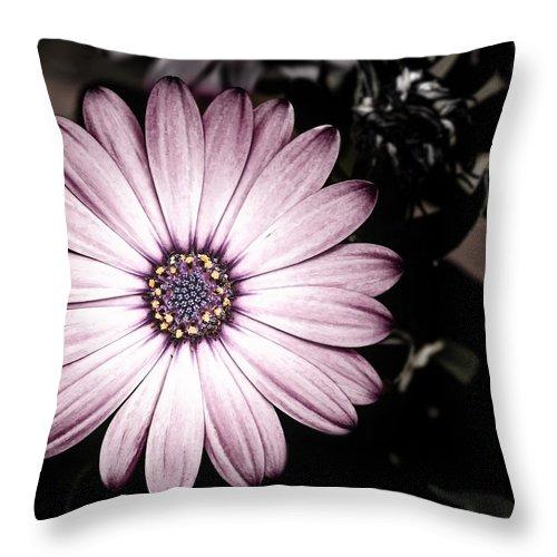 Flower Throw Pillow featuring the photograph Purple Flower by Al Mueller
