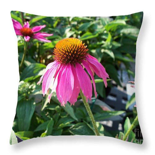 Floral Throw Pillow featuring the photograph Purple Flower by Eric Schiabor