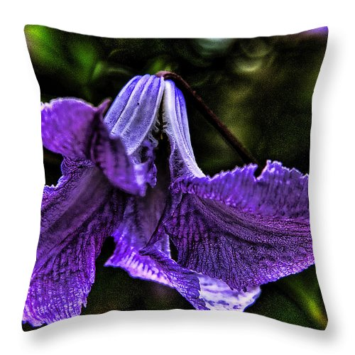 Flowers Throw Pillow featuring the photograph Purple Flower II by David Patterson