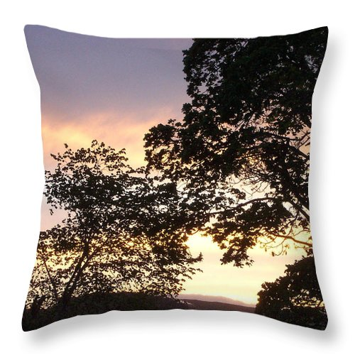Photograph Throw Pillow featuring the photograph Purple Haze by Charmaine Zoe