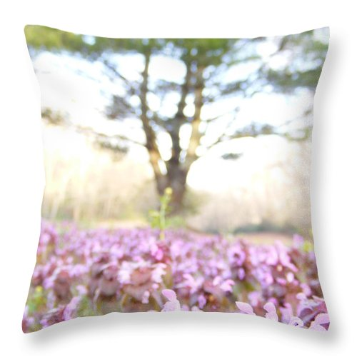 Prunella Vulgaris Throw Pillow featuring the photograph Purple Heal-all by Zen WildKitty