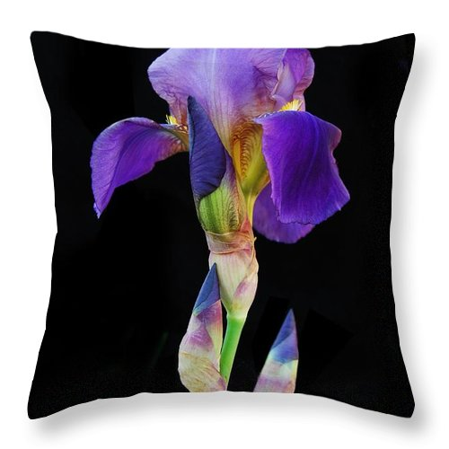 Flower Throw Pillow featuring the photograph Purple Iris by Michael Peychich