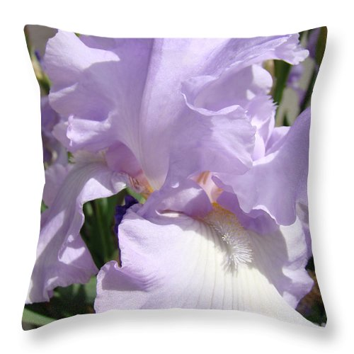 �irises Artwork� Throw Pillow featuring the photograph Purple Irises Artwork Lavender Iris Flowers 13 Botanical Floral Art Baslee Troutman by Baslee Troutman