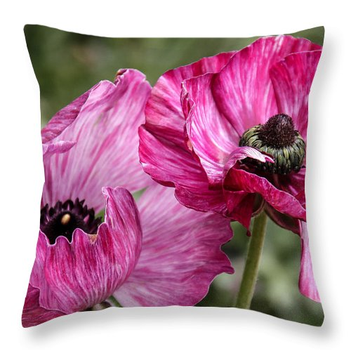 Purple Flowers Throw Pillow featuring the photograph Purple Passion by Mary Ourada