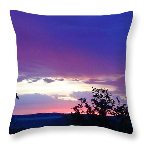 Purple Sunset Throw Pillow featuring the photograph Purple Passion by Toni Berry