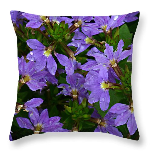 Purple Flower Plant Green Photograph Photography Throw Pillow featuring the photograph Purple Perspective by Shari Jardina