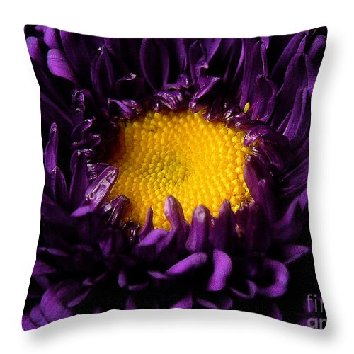 Nature Throw Pillow featuring the photograph Purples - Zooming To The Center by Lucyna A M Green