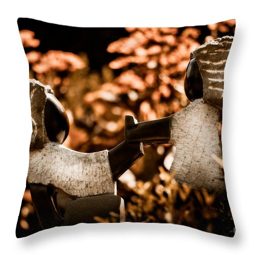 Art Throw Pillow featuring the photograph Push And Pull by Venetta Archer