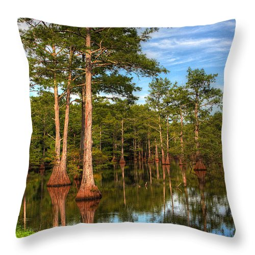 Quiet Throw Pillow featuring the photograph Quiet Afternoon At The Bayou by Ester McGuire