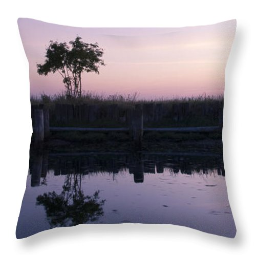 Trees Throw Pillow featuring the photograph Quiet Dusk by Idaho Scenic Images Linda Lantzy