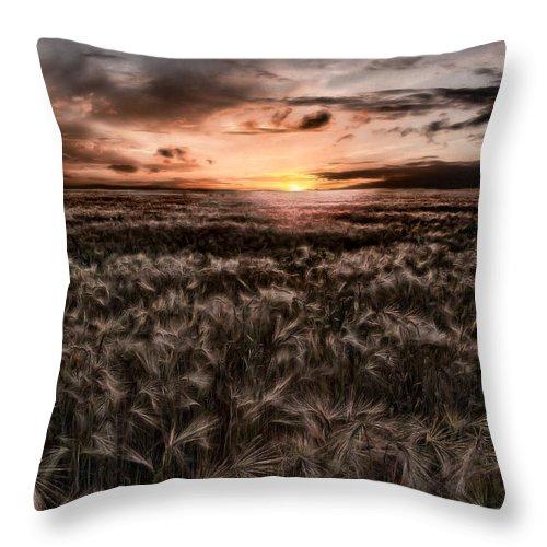 Summer Throw Pillow featuring the photograph Quiet Estivation by Joachim G Pinkawa