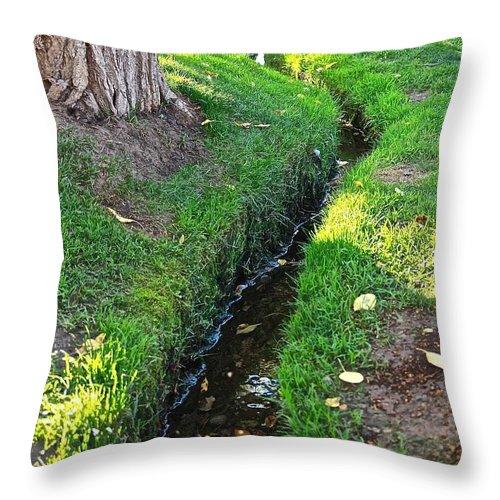 Aspen Throw Pillow featuring the photograph Quiet Place by Elisabeth Derichs