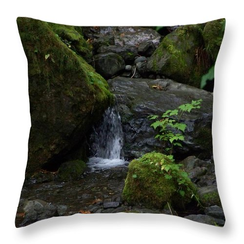 Digital Photography Throw Pillow featuring the photograph Quinault Washington Rain Forest by Laurie Kidd