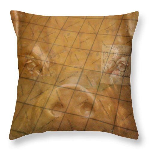 Seattle Throw Pillow featuring the photograph Rachael And The Market Tiles by Tim Allen