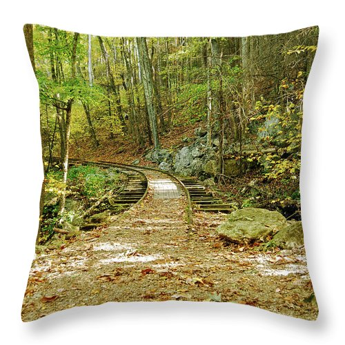 Rail Throw Pillow featuring the photograph Railroad To Nowhere by Michael Peychich
